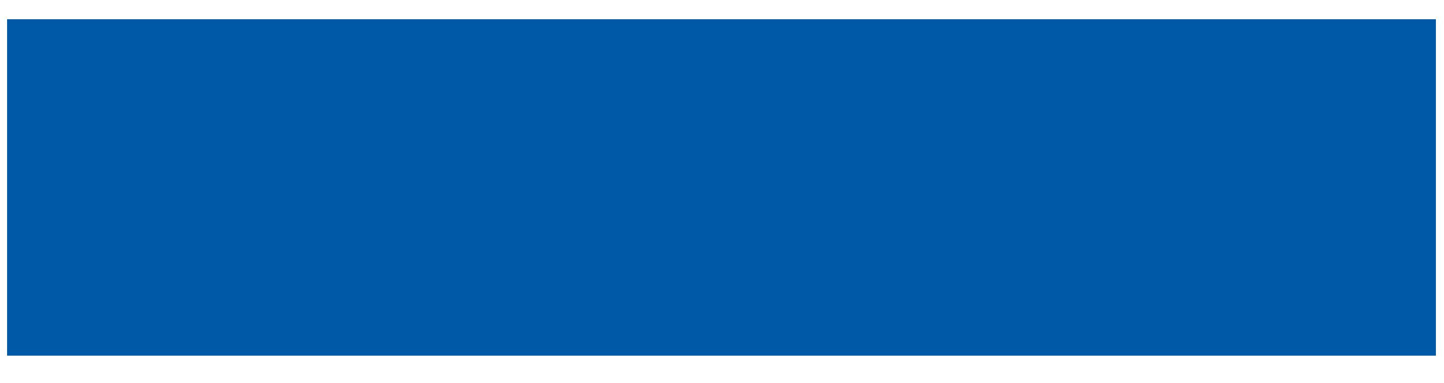 Porter Nitrous Systems Logo