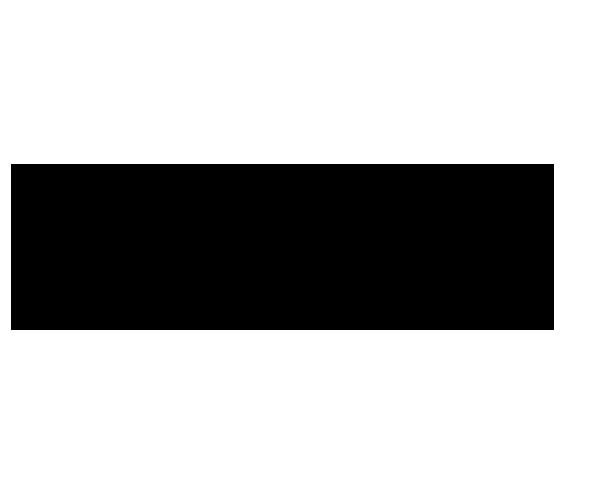 Seiler Logo