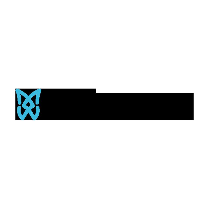Spidertech Logo